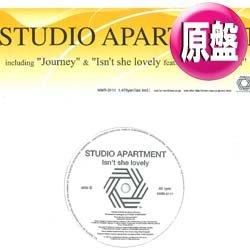 画像1: STUDIO APARTMENT / ISN'T SHE LOVELY (原盤/全2曲) [◎中古レア盤◎お宝A級品!極上HOUSEカバー!]